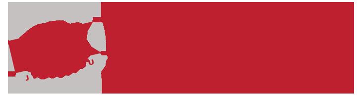 Bronx Jiu-Jitsu Logo
